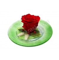 Konfet-steklen/rdeča vrtnica-obdelana 2